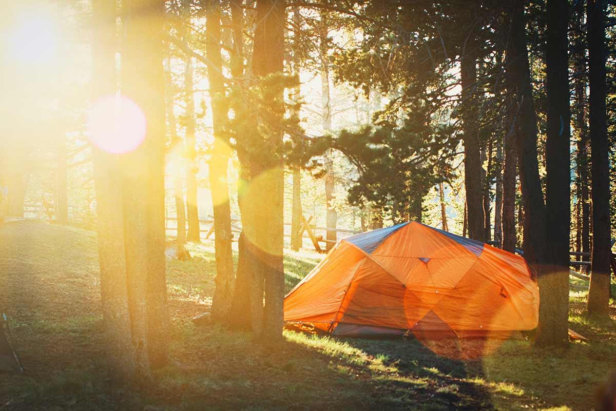 tält i skogen under en hemester